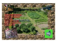 irrigation-kit-garden-irrile-01