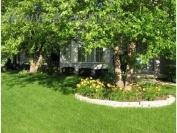 GRASS SEEDS MIXTURE (ORNAMENTAL HOT)